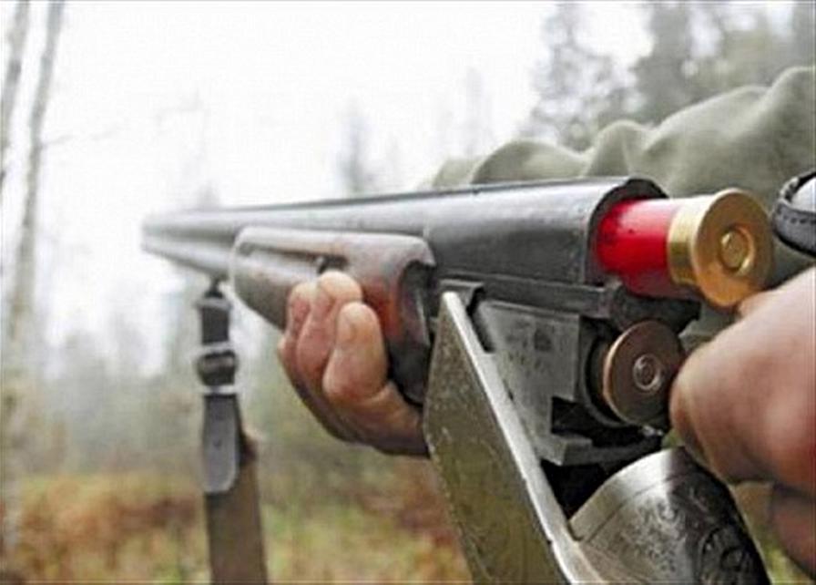 Как мне сделать разрешение на охотничье ружье