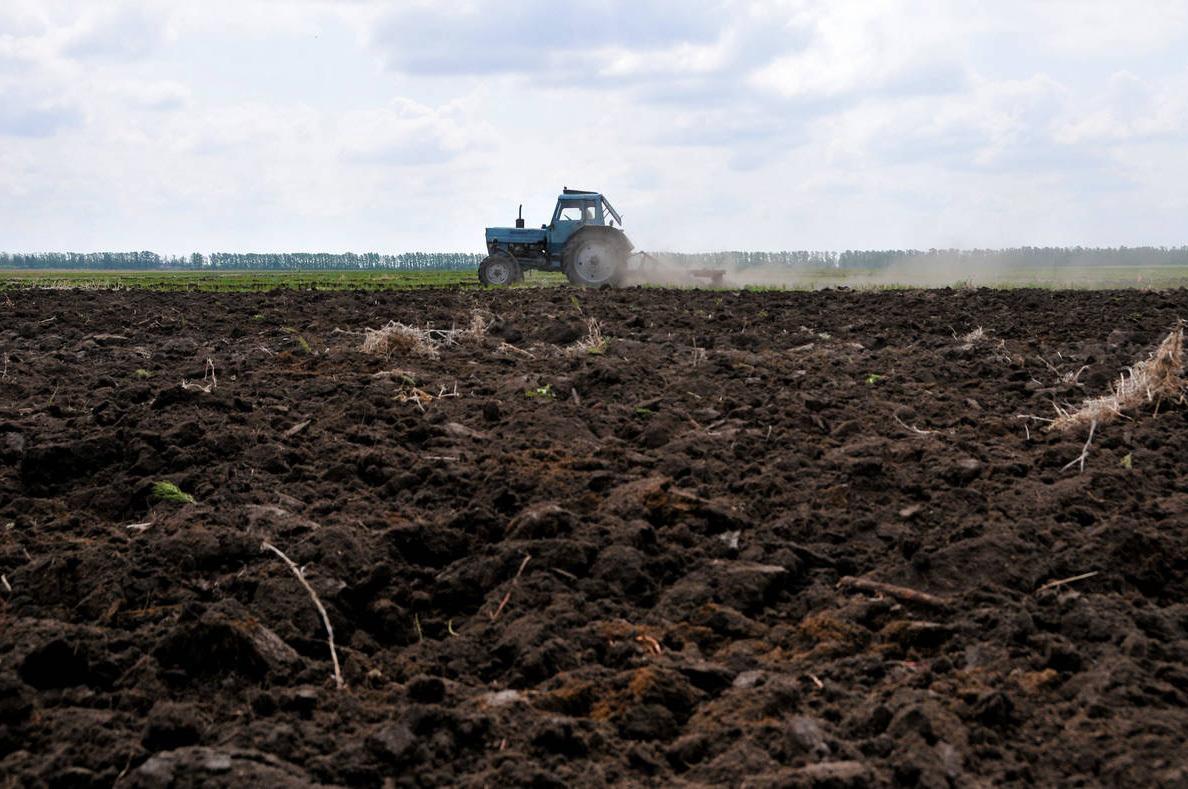 аренда сельхоз земли в северной осетии Диаспара